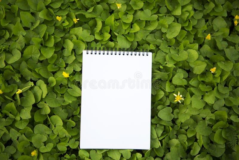 El cuaderno miente en el verdor primer foto de archivo