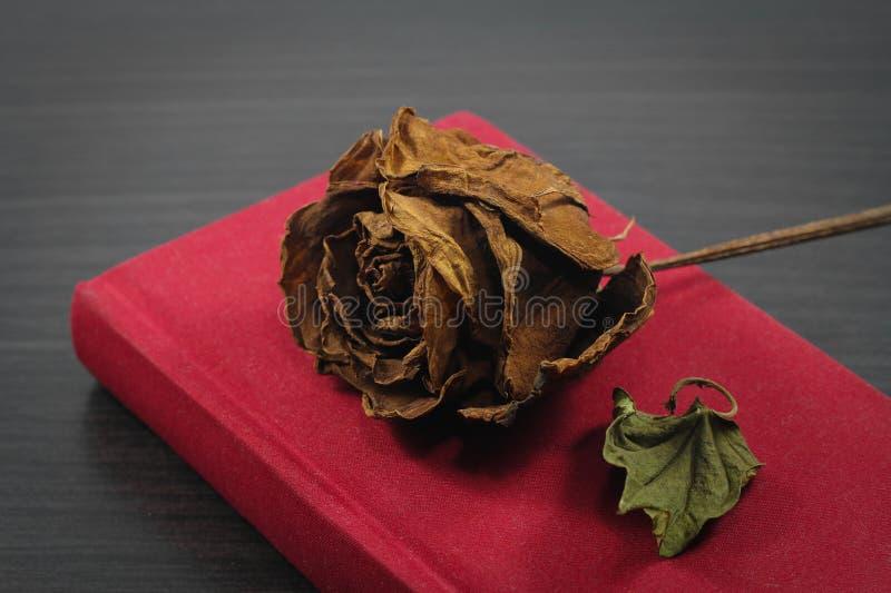 El cuaderno rojo y seca color de rosa en fondo de madera negro en vintage imagen de archivo