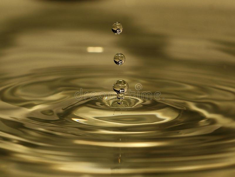El cuadro entero de la gota del agua? describe a la caja fuerte nuestros árboles en el mundo foto de archivo