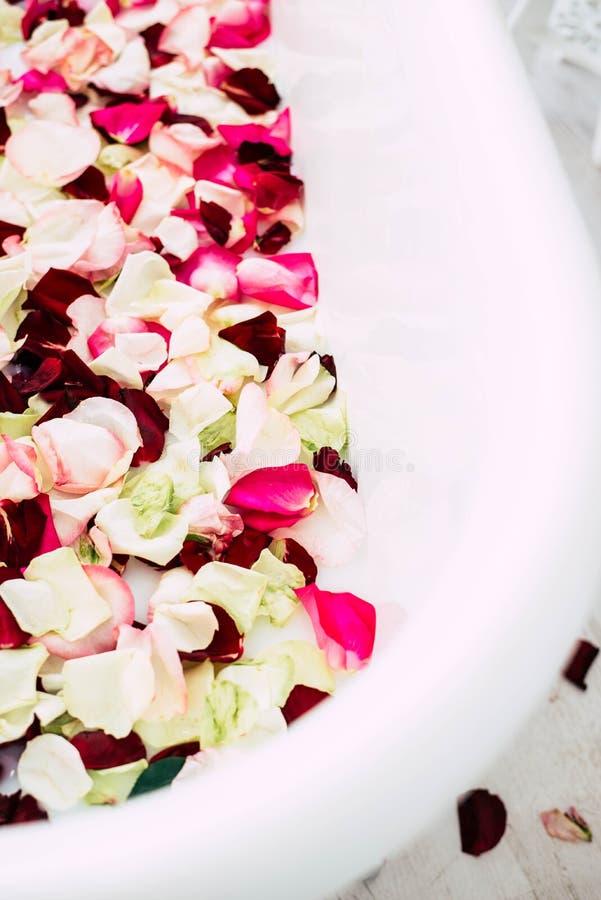 El cuarto de ba?o est? en un cuarto ligero adornado con las flores y los p?talos de rosas imagen de archivo libre de regalías