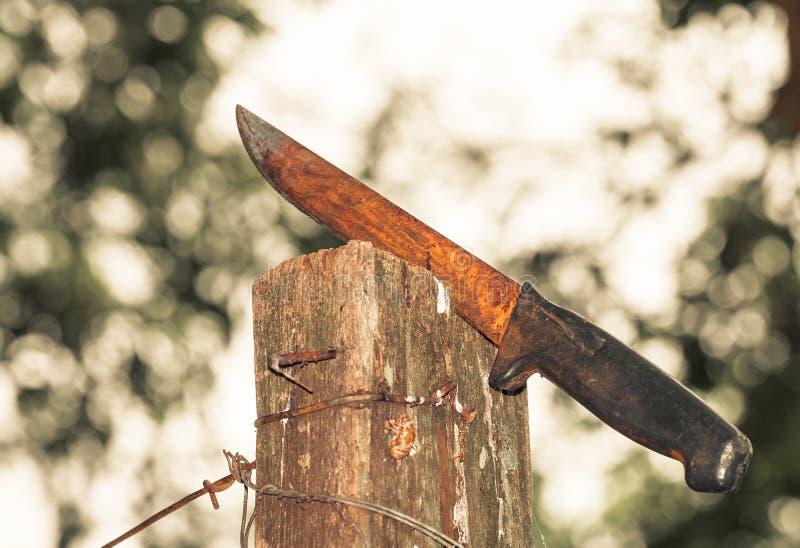 El cuchillo oxidado se pegó en un tablero de madera rodeado por los alambres del hierro foto de archivo