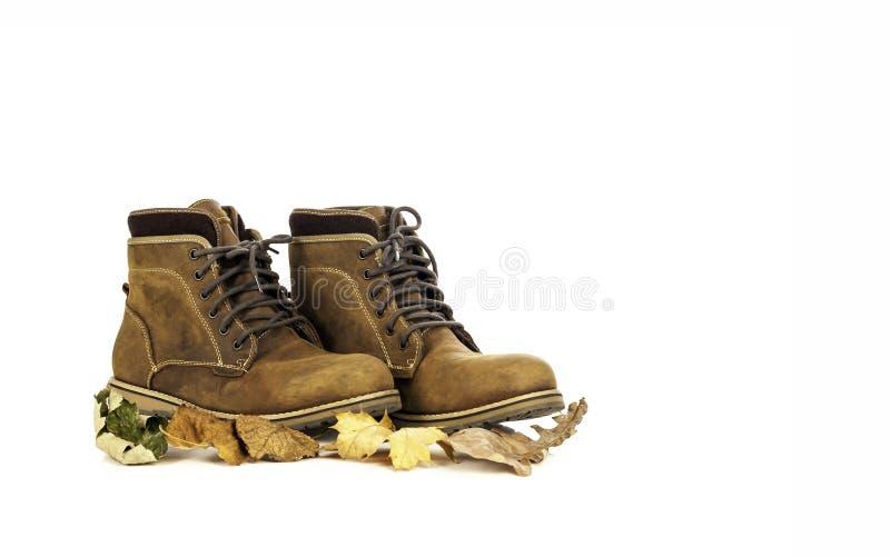 El cuero del nubuck del ante pardusco sirve botas con las hojas del otoño fotos de archivo