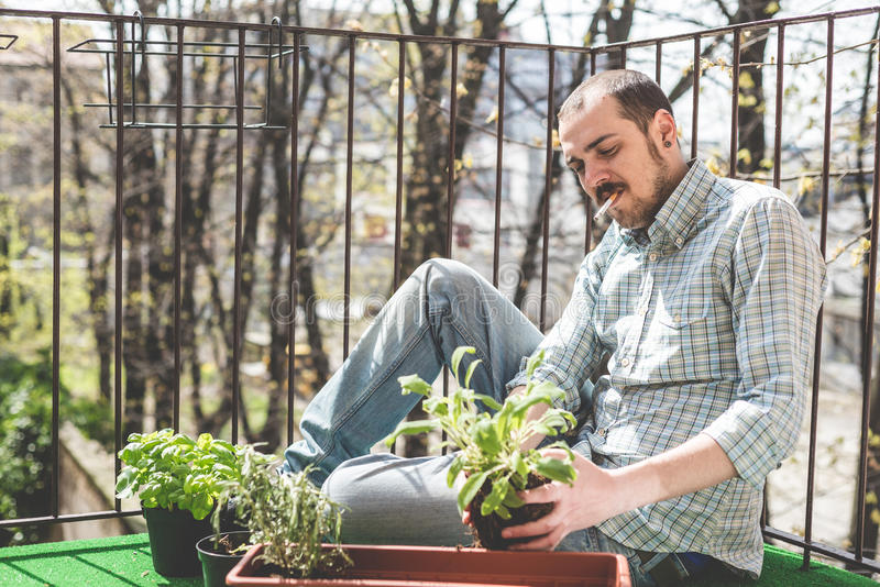 El cultivar un huerto elegante hermoso del hombre fotos de archivo