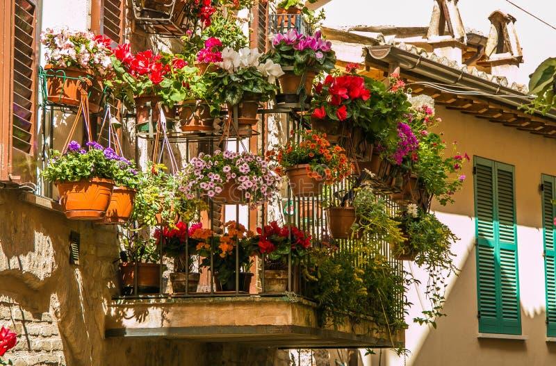 El cultivar un huerto florido del balcón romántico, Spello imagenes de archivo