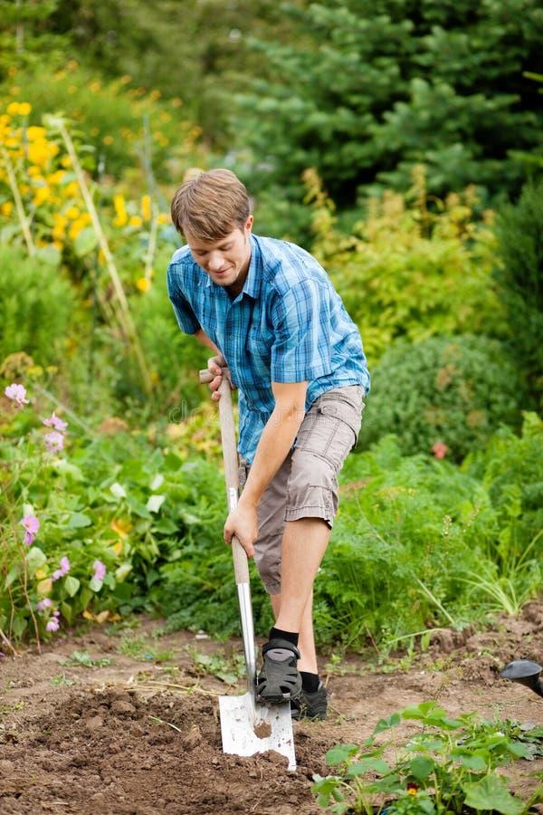 El cultivar un huerto - hombre que cava sobre el suelo fotografía de archivo