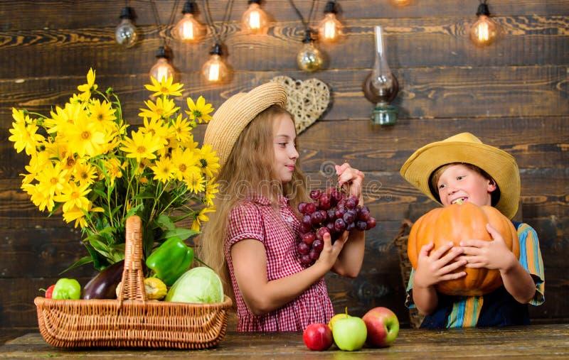 El cultivo ense?a los ni?os a adonde su comida viene Hermanos que se divierten Granja de la familia Mercado de la granja Presenta imagen de archivo