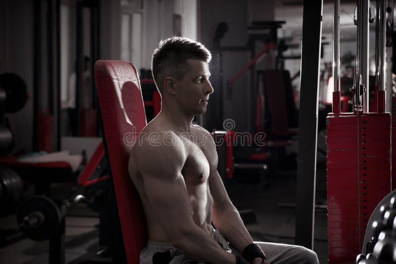 El culturista hermoso se resuelve en banco atlético en gimnasio Cuerpo masculino muscular perfecto imagen de archivo
