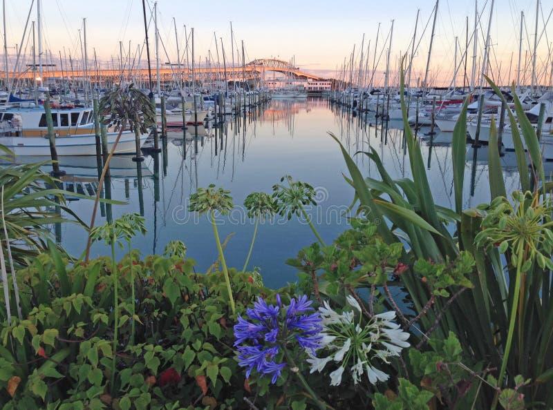 El día está amaneciendo en el puerto deportivo foto de archivo libre de regalías