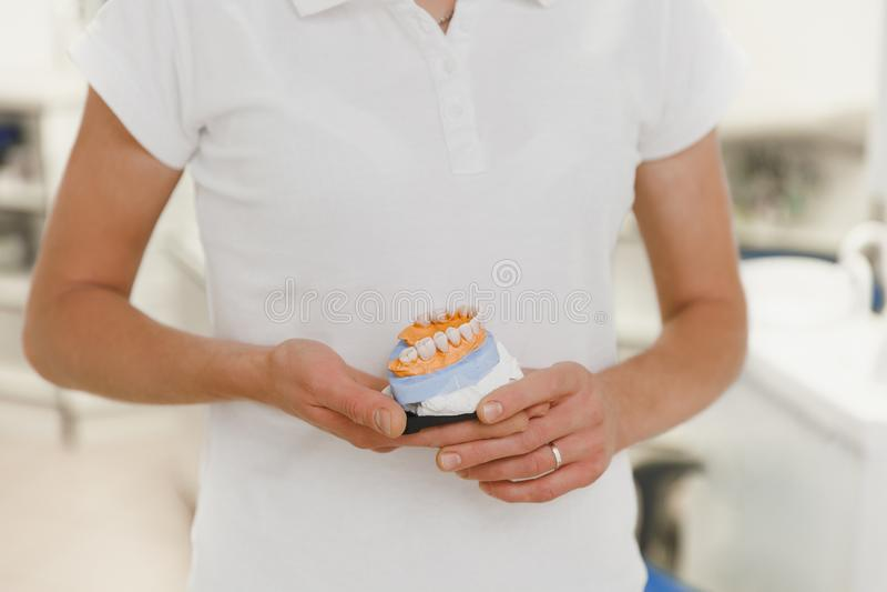 El dentista en un traje blanco se sostiene en las dentaduras en la oficina dental, primer de las manos fotos de archivo