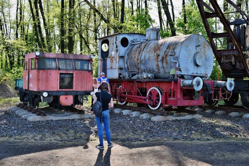 El desfile anual sobre las locomotoras de vapor en Wolsztyn, Polonia foto de archivo