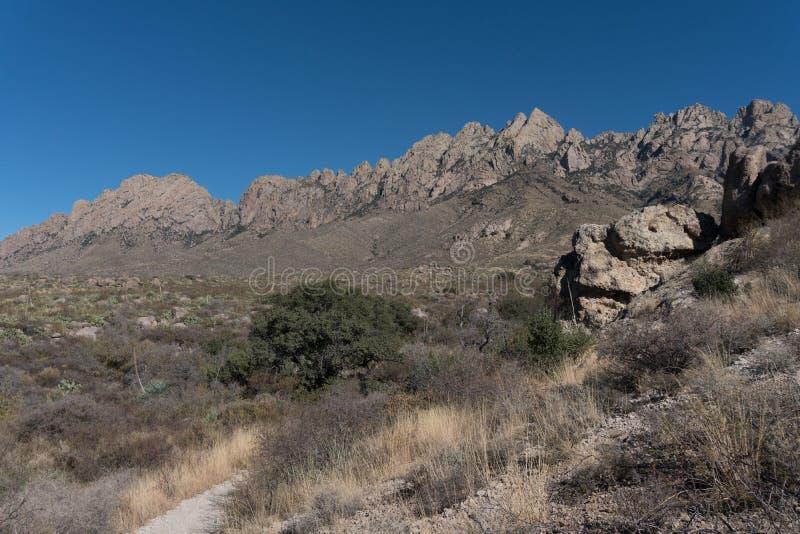 El desierto de las montañas del órgano enarbola el monumento nacional imagen de archivo
