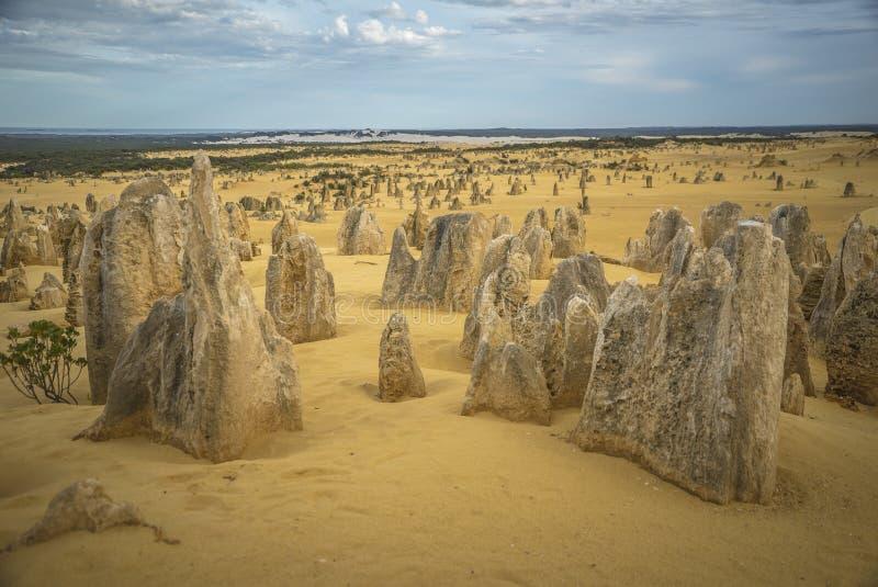 El desierto de los pináculos de Australia foto de archivo