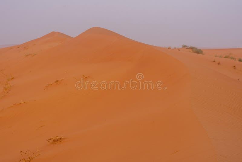 El desierto en la salida del sol pone en evidencia la arena de color naranja quemada intr?pida que hace un gran paisaje del desie fotos de archivo