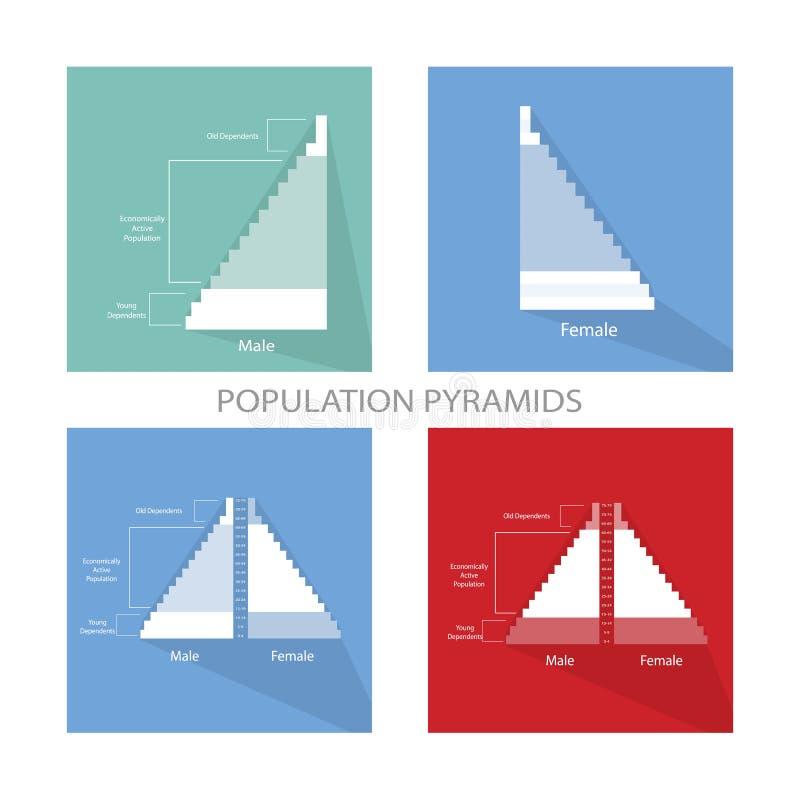 El detalle de los gráficos de las pirámides de población depende de edad ilustración del vector