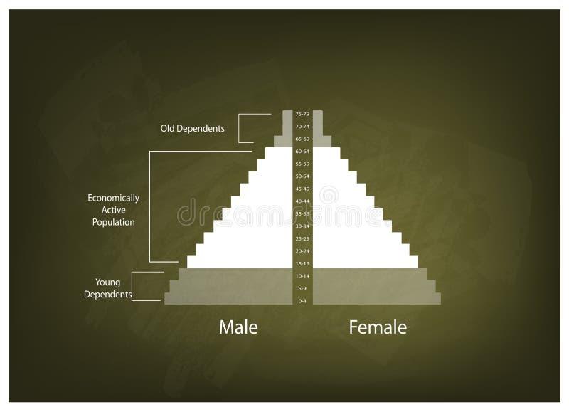 El detalle de los gráficos de las pirámides de población depende de edad libre illustration