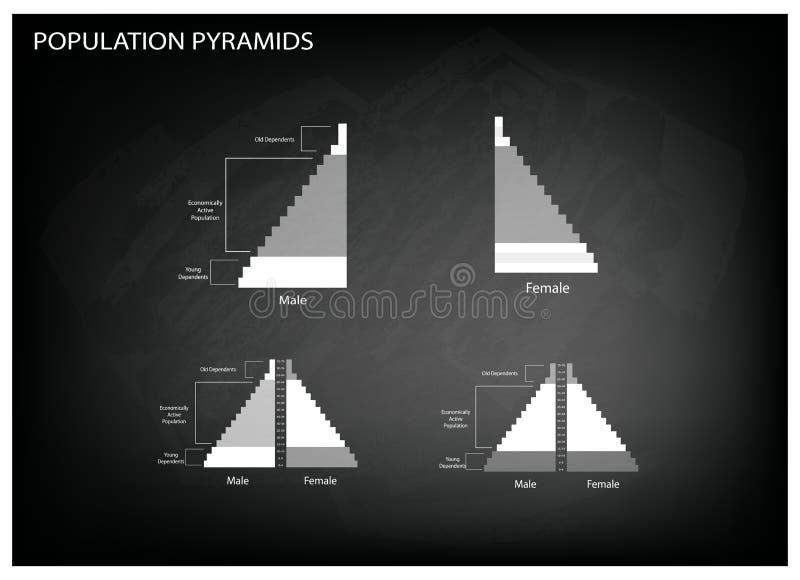 El detalle de los gráficos de las pirámides de población depende de edad y de sexo stock de ilustración