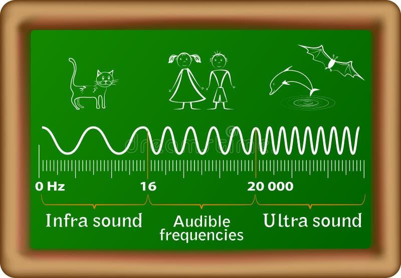 El diagrama del vector de las ondas acústicas stock de ilustración