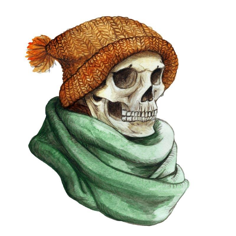 El dibujo de la acuarela en el tema del cráneo humano embotado de Halloween en naranja hizo punto el sombrero de lana caliente y  stock de ilustración