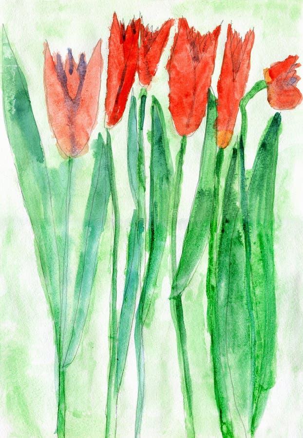 El dibujo del niño de Tulip Flowers roja, acuarela fotos de archivo