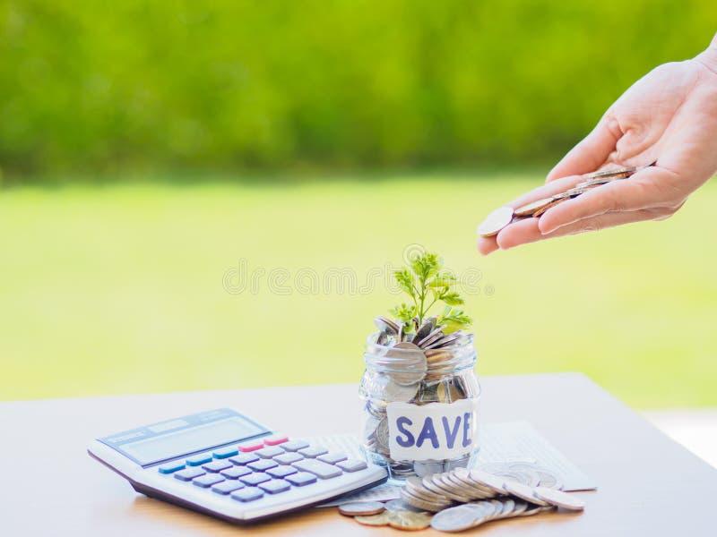 El dinero abstracto que ahorra el pequeño árbol del bebé con el tarro de cristal acuña fotos de archivo