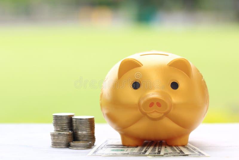El dinero del ahorro para se prepara en futuro y concepto de la inversi?n, guarro de oro y pila de dinero de las monedas en fondo fotografía de archivo libre de regalías
