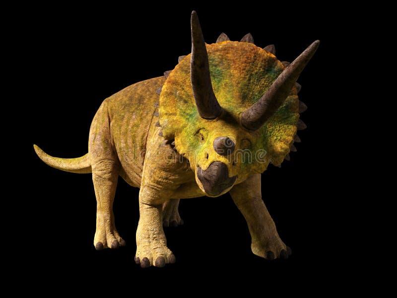 El dinosaurio del horridus del Triceratops a partir de la era jurásica 3d rinde aislado en fondo negro stock de ilustración