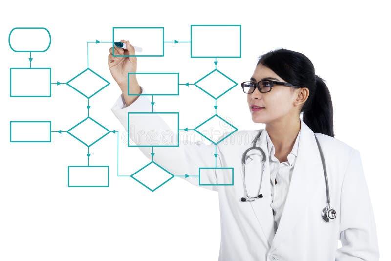 El doctor de sexo femenino hace esquema del organigrama fotos de archivo