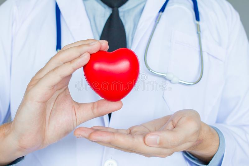 El doctor en el uniforme blanco con el estetoscopio que lleva a cabo el corazón rojo, concepto médico, sano imagenes de archivo