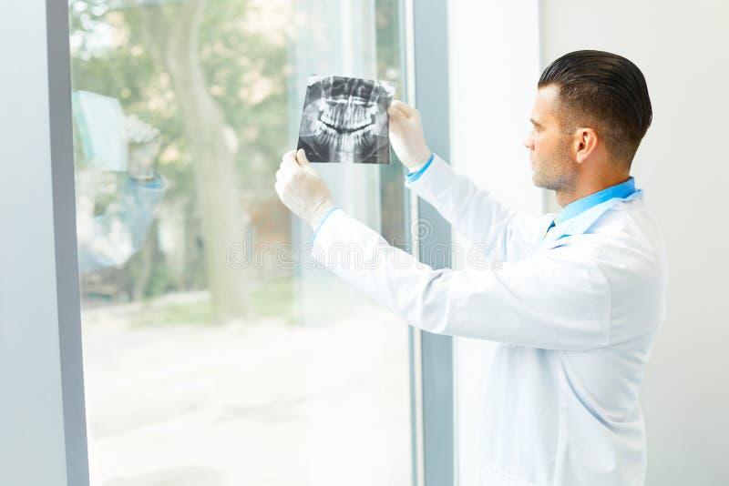 El doctor Looking del dentista en la radiografía en el hospital foto de archivo