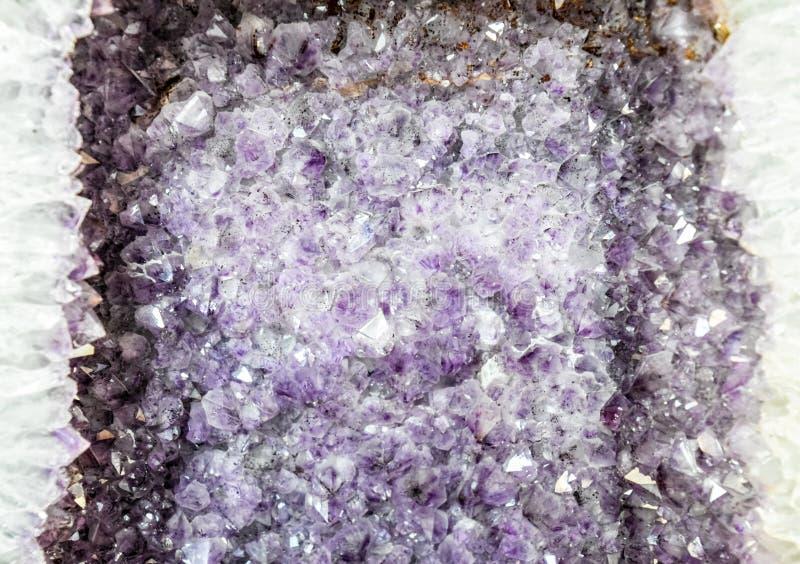 El druso de la amatista, cristales de la amatista se cierra encima de la visión, foto de archivo libre de regalías