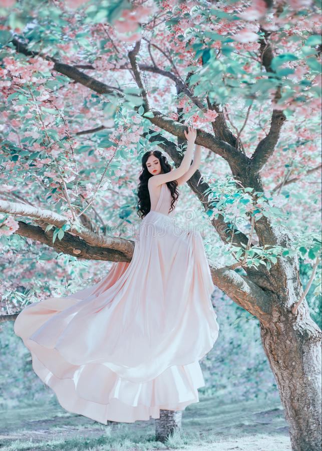 El duende increíble, apacible en un lujoso, pica suavemente el vestido el ese agitar en el viento La princesa con el pelo rizado  imagen de archivo libre de regalías