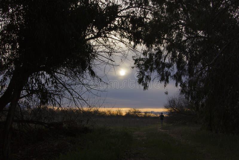 Download El Ejecutarse En La Puesta Del Sol Imagen de archivo - Imagen de motivación, sunset: 44856101