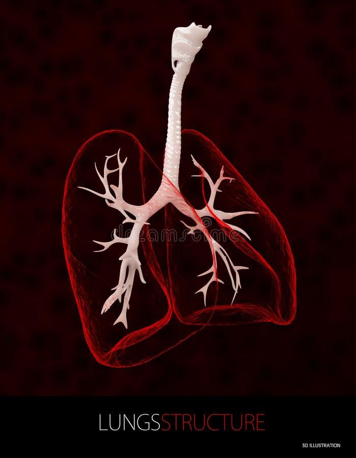 el ejemplo 3d de la estructura de los pulmones, atención sanitaria aisló negro libre illustration