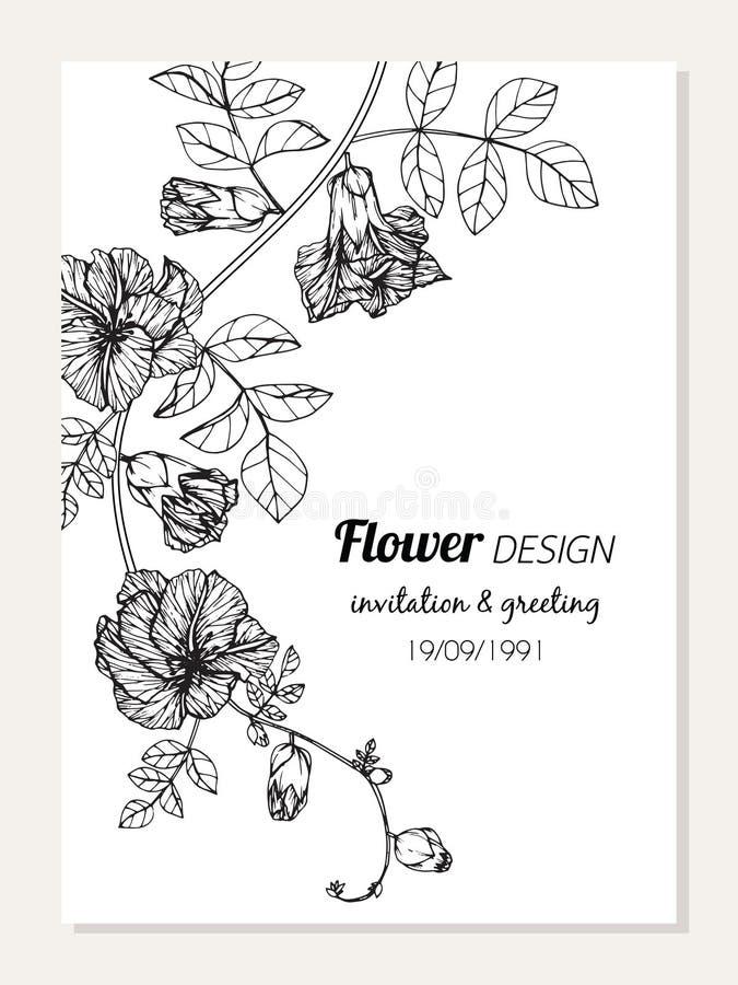 El ejemplo del dibujo del marco de la flor del guisante de mariposa para la tarjeta de la invitación y de felicitación diseña ilustración del vector