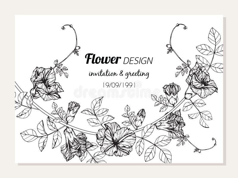 El ejemplo del dibujo del marco de la flor del guisante de mariposa para la tarjeta de la invitación y de felicitación diseña stock de ilustración