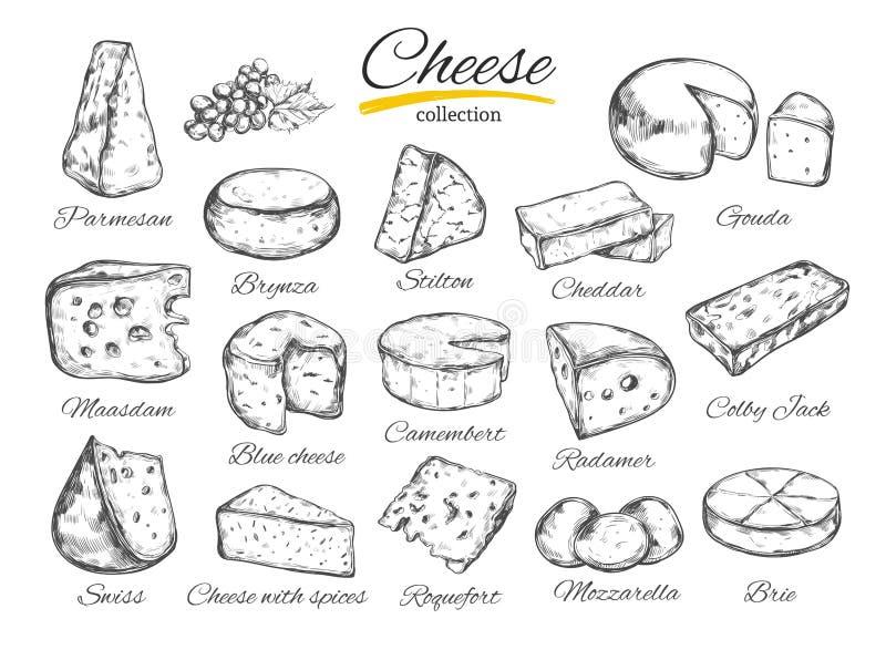El ejemplo dibujado mano del vector de la colección del queso del queso mecanografía stock de ilustración