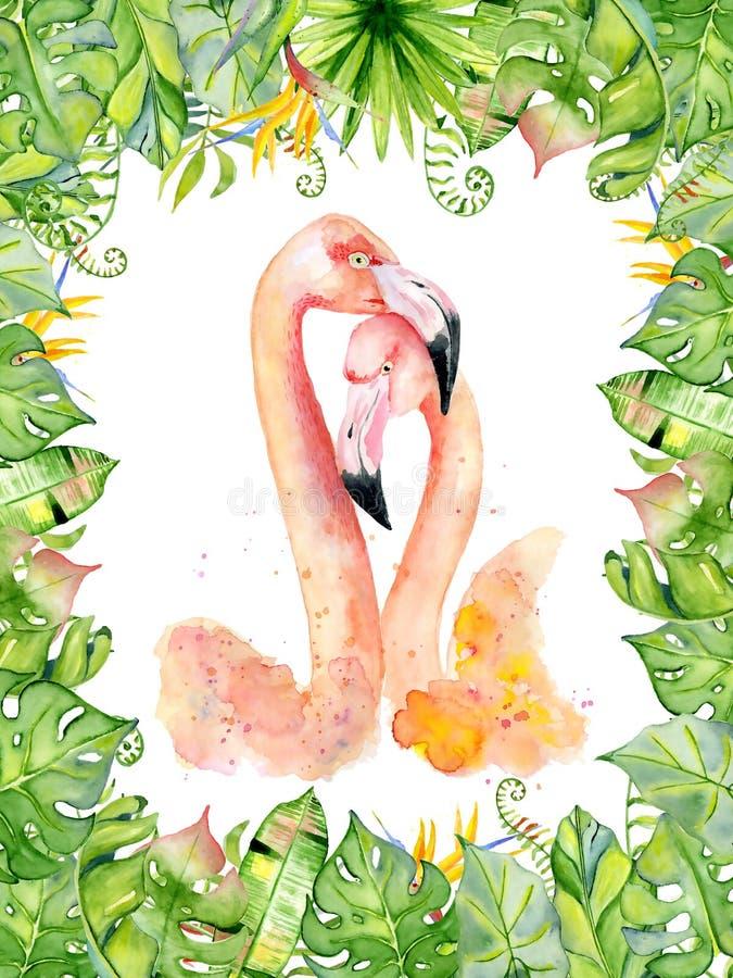 El ejemplo dibujado mano rosada de la acuarela del flamenco en el arreglo con las plantas tropicales verdes, monstera exótico y e libre illustration