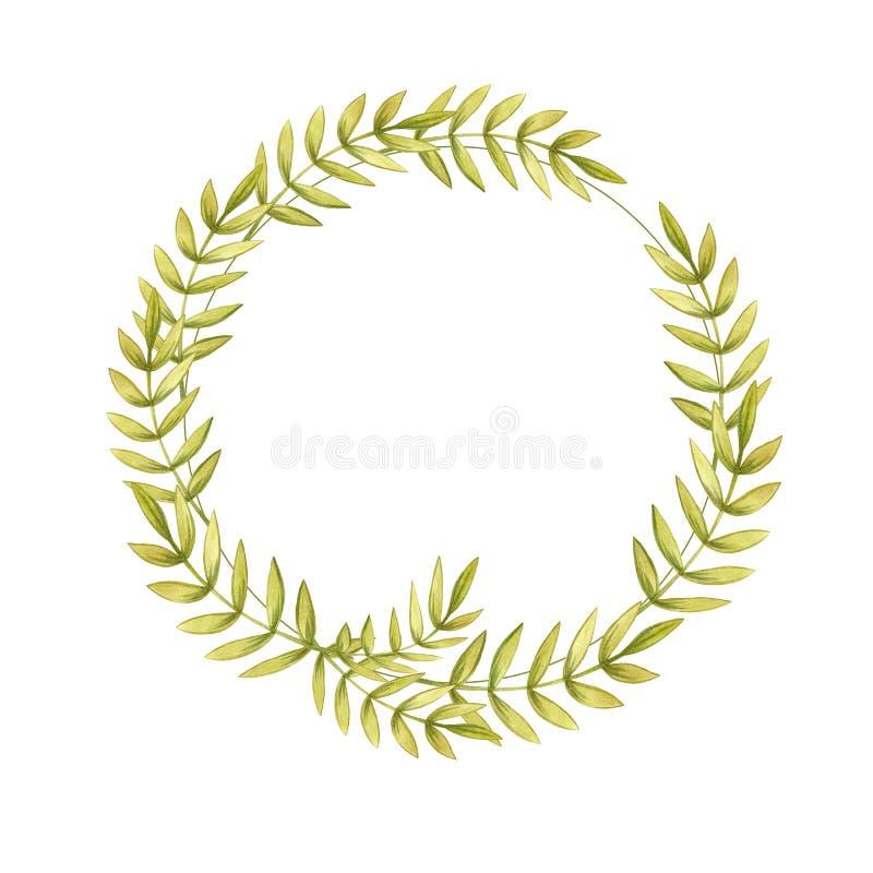 El ejemplo floral de la acuarela de ramas con las hojas verdes claras del color enrruella stock de ilustración