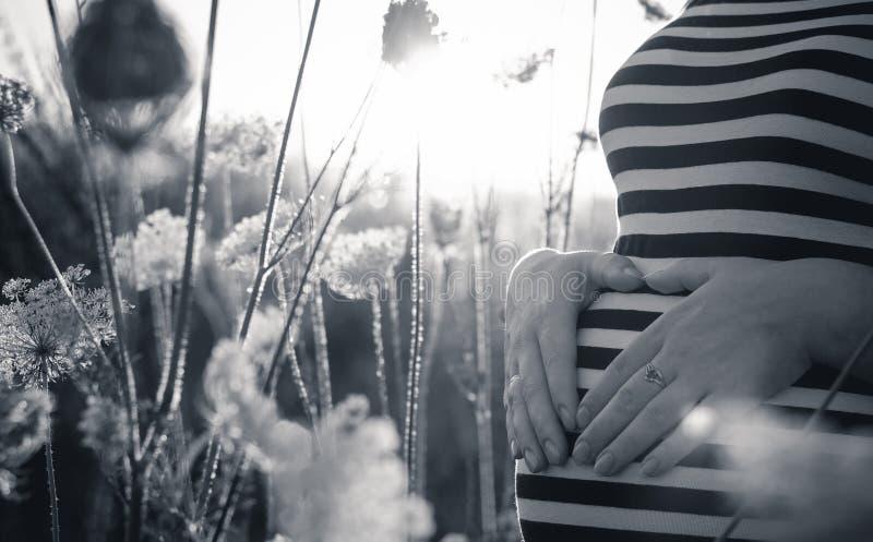 El embarazada está esperando poco sol imágenes de archivo libres de regalías