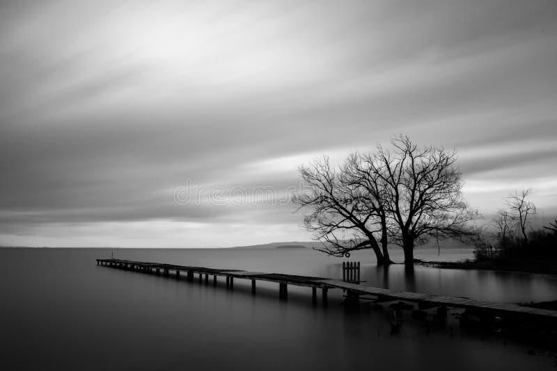 El embarcadero, todavía riega y los árboles imagen de archivo