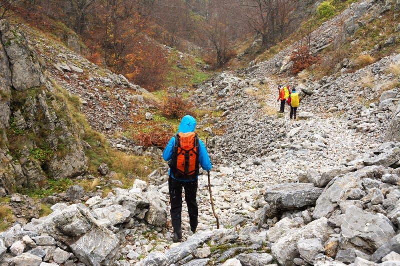 El emigrar en las montañas de Mehedinti en otoño imágenes de archivo libres de regalías