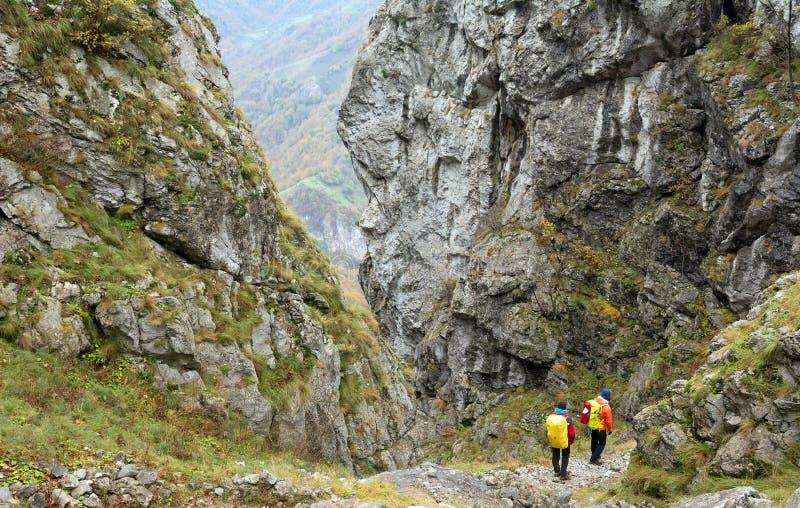 El emigrar en las montañas de Mehedinti en otoño fotos de archivo libres de regalías