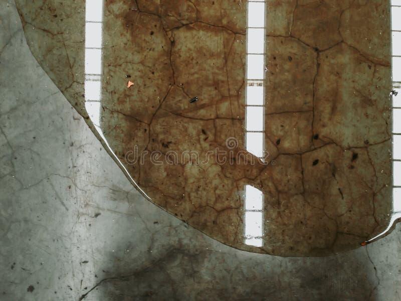 El escape del aceite o del agua en piso concreto de la fábrica, necesita limpio fotos de archivo libres de regalías