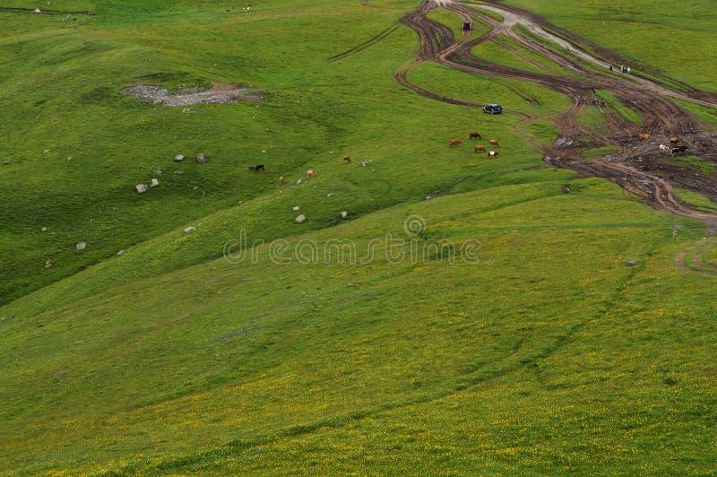 el esplendor de las montañas del Cáucaso foto de archivo
