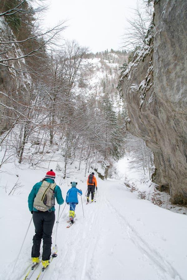 El esquí de invierno de Transilvania se divierte con la familia en las montañas en Rumania imagen de archivo libre de regalías