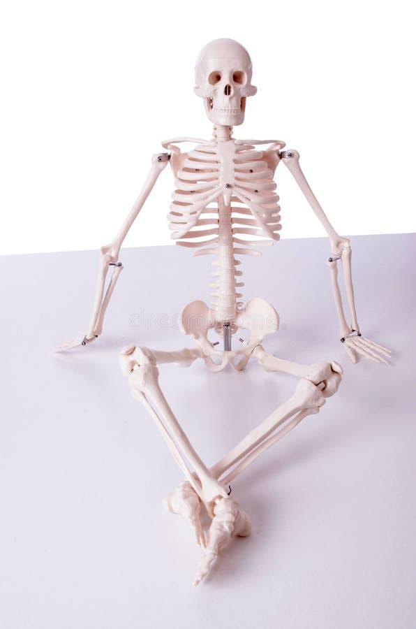 El esqueleto en concepto divertido en blanco fotos de archivo
