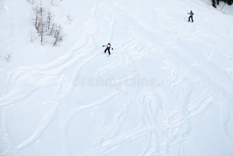 El esquiador hace sus pistas en la nieve profunda del polvo fotografía de archivo libre de regalías