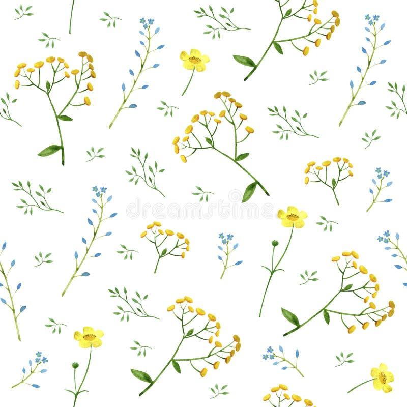 El estampado de flores colorido con nomeolvides, el tansy y el ranúnculo florece ilustración del vector