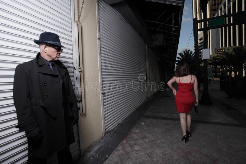 El Estar Al Acecho Despredador En Las Sombras Fotografía de archivo