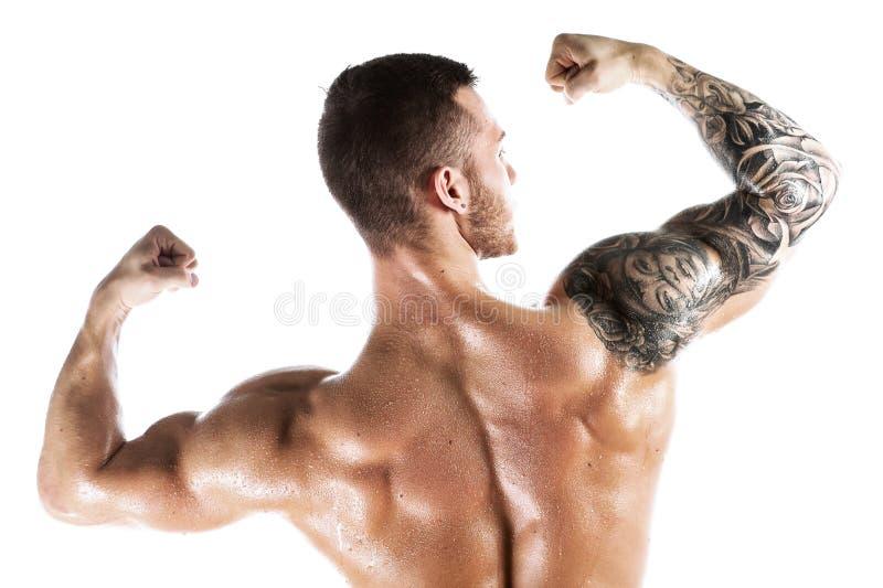 El estudio tiró de la presentación muscular del hombre joven descamisada fotografía de archivo
